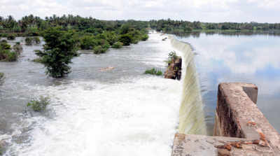 Karnataka will try to convince SC about water shortage