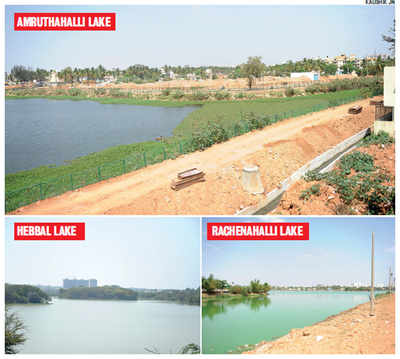 BBMP awaits orders as lakes get encroached