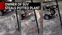 Video of SUV owner stealing potted plant in Vadodara goes viral