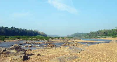 Karnataka: Dakshina Kannada's lifeline Netravati is thirsting for life