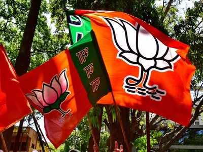 Karnataka Assembly bypolls: Ruling BJP leading in RR Nagar and Sira