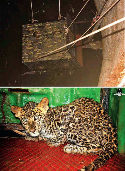 Trained villagers set to rapidly rescue animals