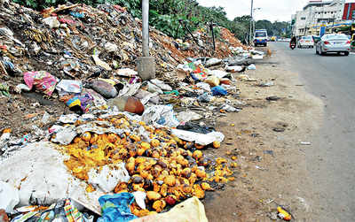 Footpaths, empty plots, they all just go to waste
