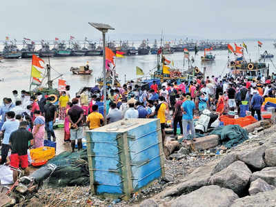 150 fishermen get Rs 26L for setting marine animals free