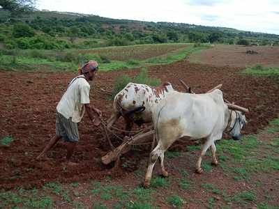 Uddhav Thackeray-led government loan waiver for farmers to cost Rs 40,000 crore