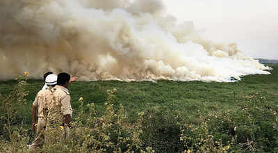 NGT breathes fire, singes BBMP over Bellandur Lake