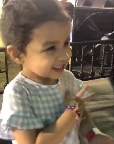 Watch: When Ziva wanted to hug her papa Chennai Super Kings captain MS Dhoni in the middle of an IPL match