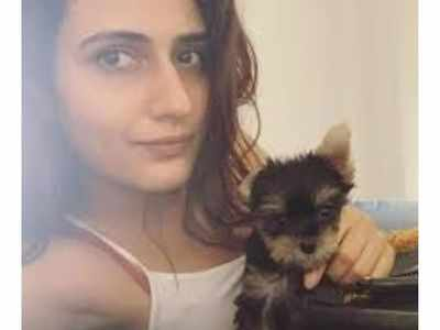 Fatima Sana Shaikh's pet Bijli has a special appearance in the actor's music video