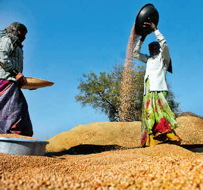 The promise of agro-processing