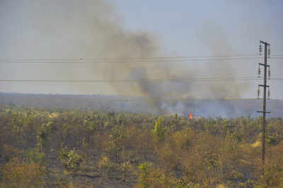 Tamil Nadu:  College students caught in forest fire in Theni hills, rescue operations underway