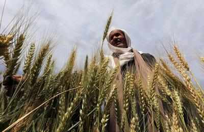 Coming soon: Community Radio for Kerala farmers
