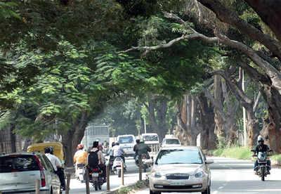 Jayamahal Rd will soon be widened