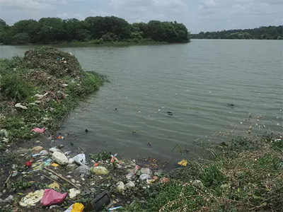 'Focus on cleaning the lakes, forget Sharavati river'