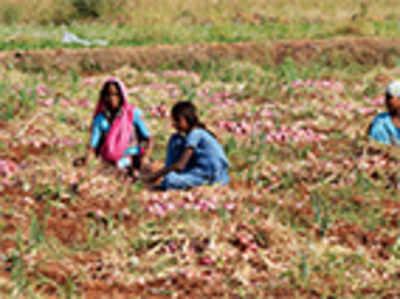 Malnutrition, illiteracy still plague Raichur district