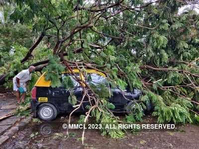 1 killed in Raigad district as Cyclone Nisarga whirls past Mumbai