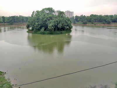 'Not make-up, our lakes need systemic surgery'