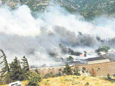 Canada heatwave kills 486, sparks wildfires