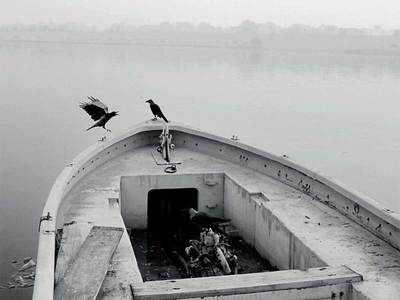 Crow-ing glory