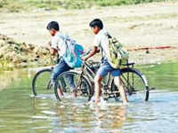 Watch: Students forced to cross a river in MP's Damoh to reach their school