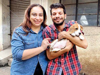 Pet owner drags Zomato to court over missing dog