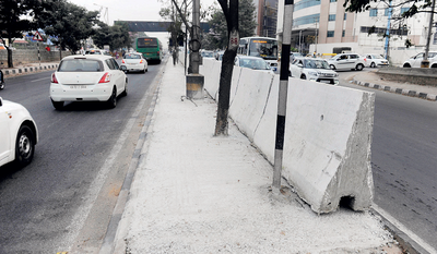 BBMP is choking trees on Ring Road with concrete