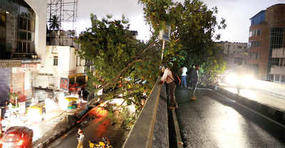 Bengaluru's tryst with fury