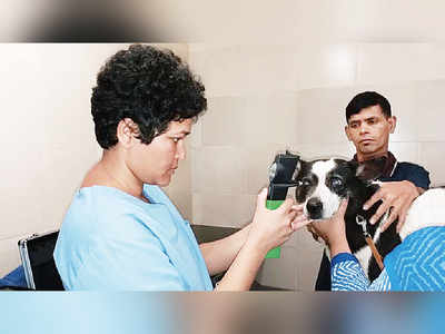 City's first eye clinic for animals in Chembur