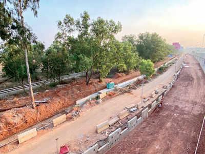 Metro to cut 768 trees, High Court approves