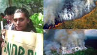 Amazon rainforest fire: Mumbaikars protest outside Brazilian embassy