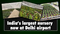 India's largest nursery now at Delhi Airport