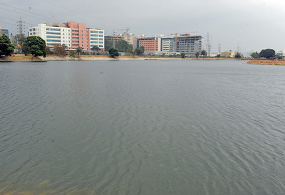 Bengaluru's Kundalahalli Lake dons a new look: It has been revived at a cost of Rs 6 crore