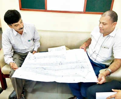 BBMP is looking to translocate trees on Jayamahal Road