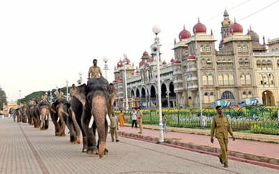 Karnataka: Govt gives green signal for Film City in Mysuru