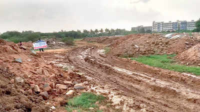 Bengaluru lakes up for sale: Land sharks in their lakes