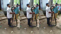 15-ft-long king cobra rescued from kitchen of a house in Odisha
