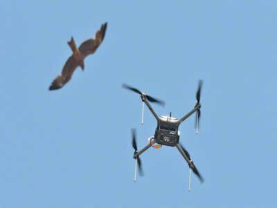 Adani firm flies high in tackling rogue drones