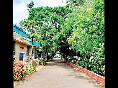 Naturopathy centre founded by Gandhi in a desperate state