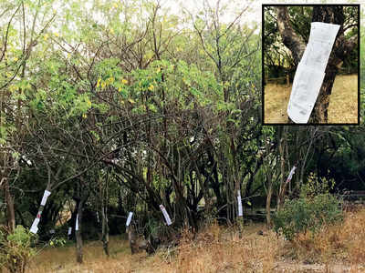 Civic body to axe 70 trees on Vetal Tekdi for one tank