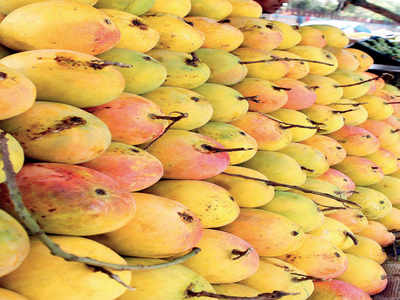 The truth about mangoes