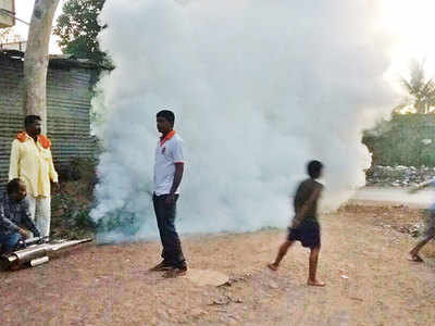 After Sansar village, Pune dist aims to become mosquito-free