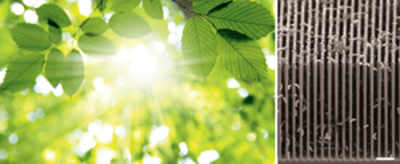 Solar powered device to clean greenhouse gases