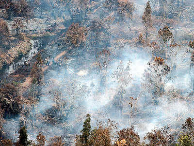 Indonesia shuts schools, airports over forest fires