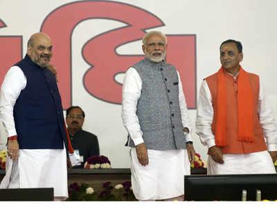 Vijay Rupani: Gandhi, Sardar gave 'swaraj', Modi-Shah 'purna swaraj'