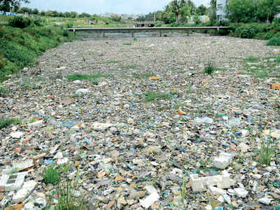 This is how Bengaluru lakes get trashed