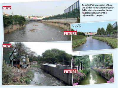 Korean 'dream' for Koramangala drain