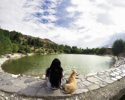 How holidaying with your pet can change your life