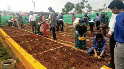 Manyata tech workers get organic break
