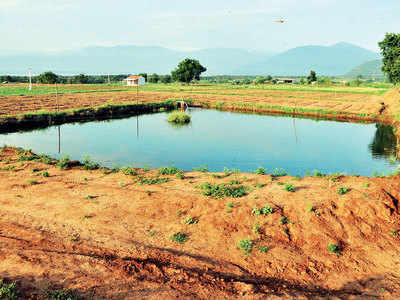 Citizens exploit 5 TMC groundwater: Study