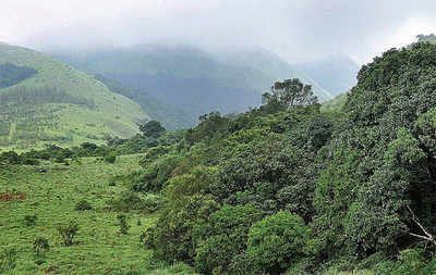Nobody can grab land under Forest Rights Act