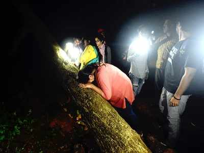 29 protesters arrested in Aarey released on bail